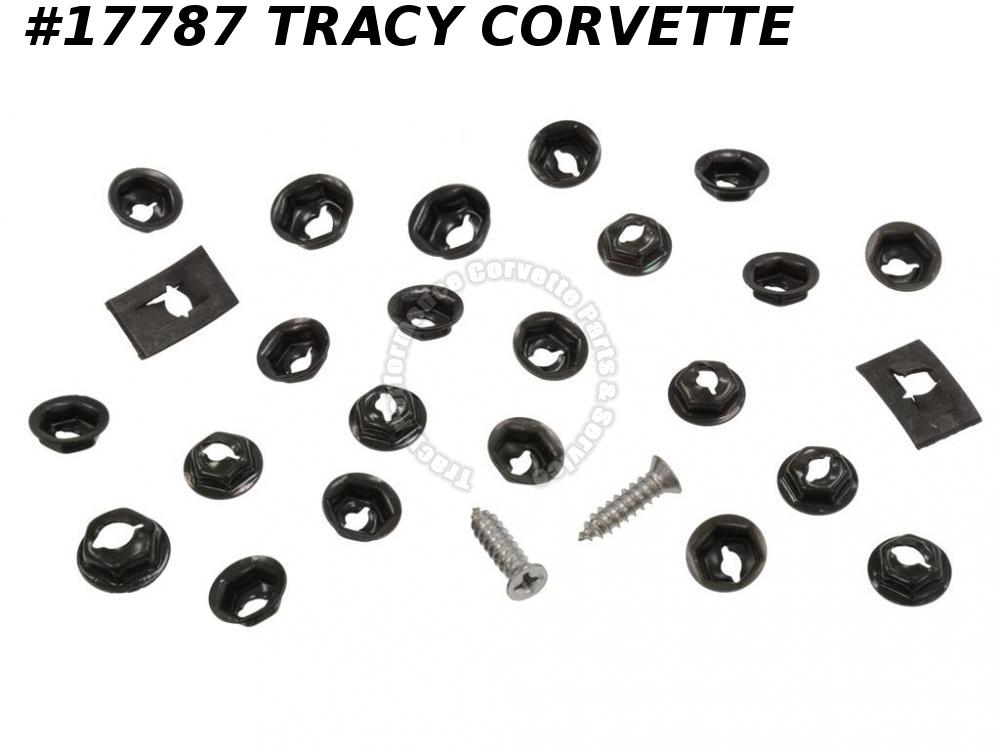 67 427 Hood Grille And Number Mounting (28 Pieces)